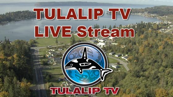 TulalipTVLiveStream
